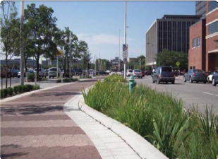 Vegetated Swale and Pervious Pavement
